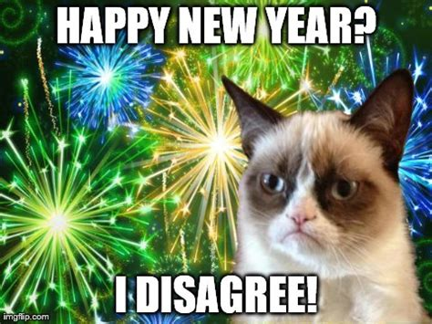 Grumpy Cat New Years Meme - new year cat not really imgflip