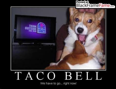 Taco Bell Memes - taco bell meme mega compilation