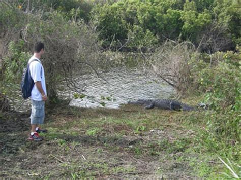 Boat Crash Lake Okeechobee by Our National Parks 187 Safety Often Overlooked By Glades