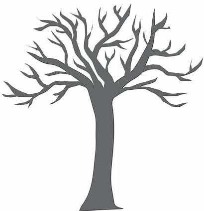 Tree Clipart Trunk Coloring Empty Colouring Bare