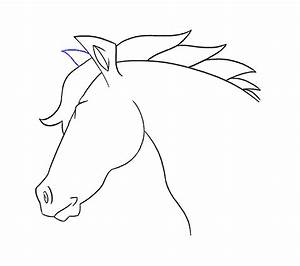 How to draw a Horse's Head | Easy Drawing Guides