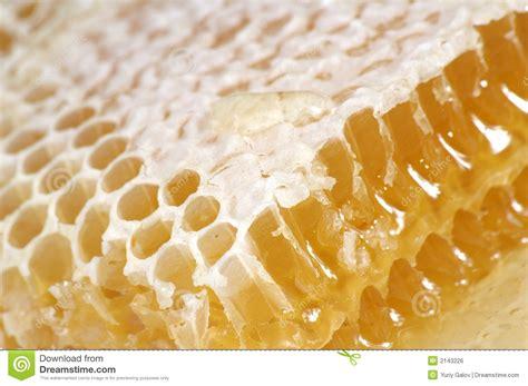 Mel no favo de mel foto de stock Imagem de honeycomb