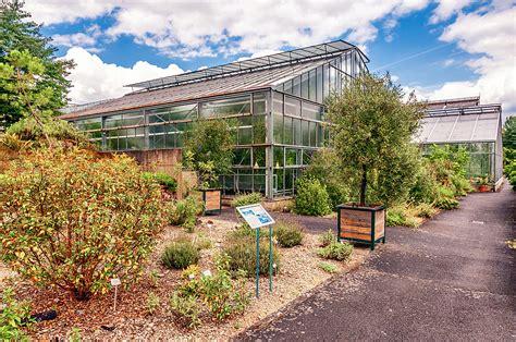 Botanischer Garten by Marburg Botanische G 228 Rten In Marburg