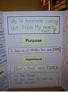 Science Project Board 8th Grade Tags  elementary science fair  Science Fair Projects For 8th Grade Board