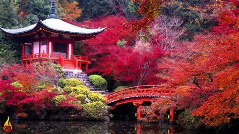 japanese zen relaxing music asian hour