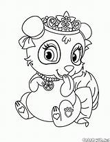 Panda Coloring Pages Blossom Pets Colorkid sketch template