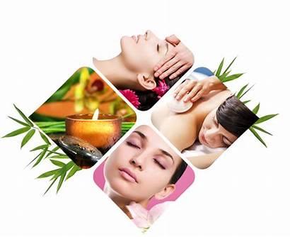 Massage Parlour Spa Sorina Ceugea Kisspng Clipart