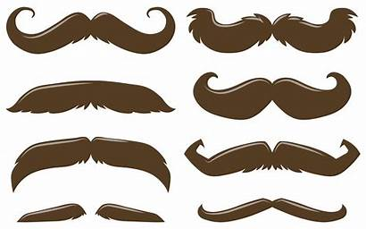 Mustache Brown Types Vector Different Handlebar Styles