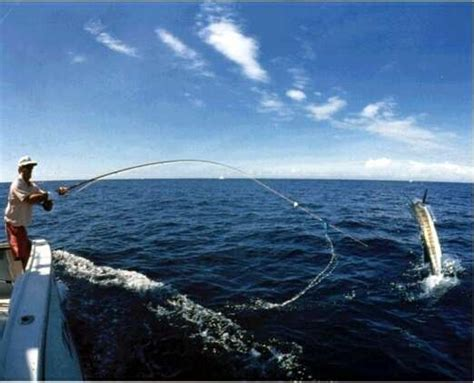 fishing knots tips  tricks deep sea fishing