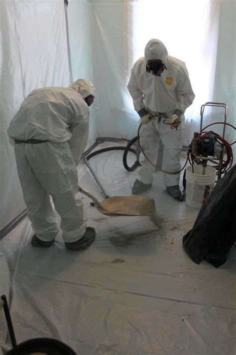 asbestos abatement environmental group