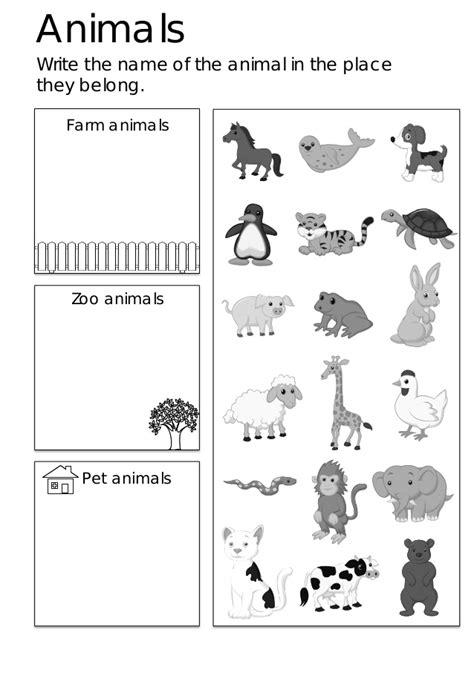 animals worksheets for kindergarten pdf free beginning