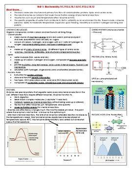 biology eoctest prep review book  dorff bio tpt