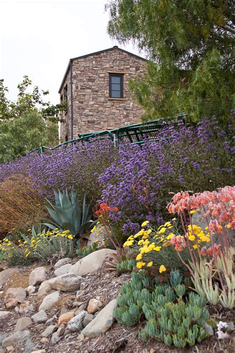 landscape designer orange county best landscape ideas drought tolerant landscaping orange county