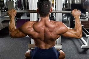 Trapezius Muscles  U2013 Functional  Muscles  Pathology  U0026 Exercises