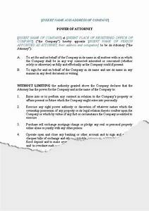 business companies new zealand legal documents With unlimited power of attorney document