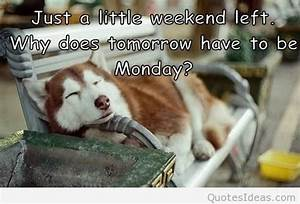 Tomorrow is mon... Tomorrow Funny Quotes