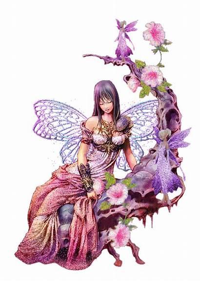 Fairies Rose Fanpop Yorkshire Fairy Animated Flower
