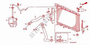 Radiator Hose  Reserve Tan K  1 8l  For Honda Cars Civic Lx