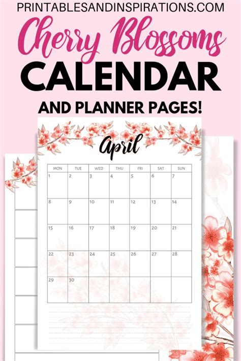 cherry blossoms calendar  planner stickers