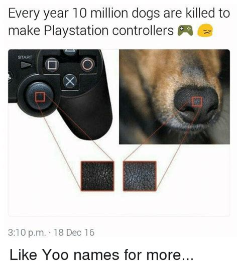 Playstation Meme - every year 10 million dogs are killed to make playstation controllers start 310 pm 18 dec 16