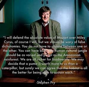 Best 25+ Stephe... Stephen Fry America Quotes