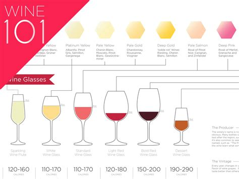 light red wine for beginners identifying flavors in wine wine folly
