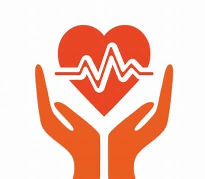Health Insurance Healthcare Clipart Provider Solution Care