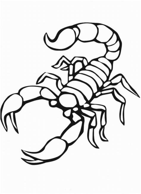 skorpion maerchen aus aller welt der brueder grimm von