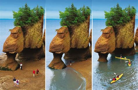 The Hopewell Rocks, Bay Of Fundy, Canada