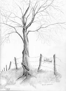 Micheal G Hammons Artworld  Pencil Drawing Of Tree