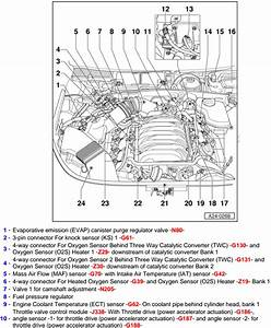Location Of The Fuel Pressure Regulator