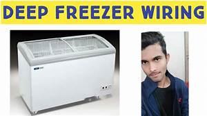 Deep Freezer Wiring Diagram Easy  U0026 Simple Ud83d Udd25