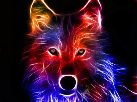 3d Animal Wallpaper Hd - 3d hd wallpapers 1080p 3d abstract wallpapers wolf