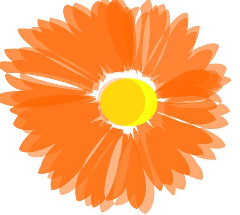 giant flower clipart   cliparts  images