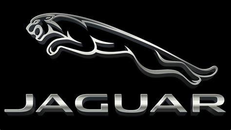 Jaguar logo стоковые фото, картинки и изображения. Jaguar Logo Meaning and History Jaguar symbol