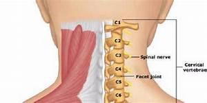 Остеохондроз поясничного отдела позвоночника упражнения для лечения