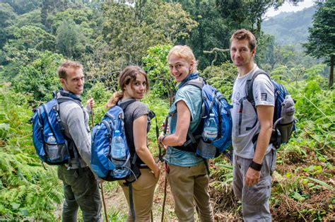 Mountain gorilla tracking in Bwindi Impenetrable Forest ...