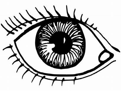 Coloring Eye Pages Printable Eyes Sheets Human