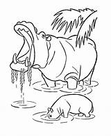 Hippo Coloring Pages Wild Animals Animal Hippopotamus Printable Drawing Line Sheets Hippos Yawning Zoo Colouring African Sheet Activity Adult Honkingdonkey sketch template