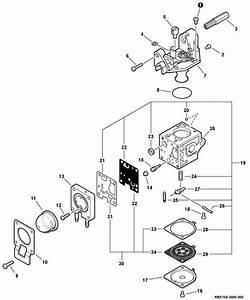 Troy Bilt 4 Cycle Trimmer Parts Diagram
