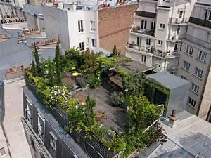Le toit terrasse vu de haut jardins toits verts et for Carnet de travail d un jardinier paysagiste 9 un toit terrasse verdoyant en plein paris
