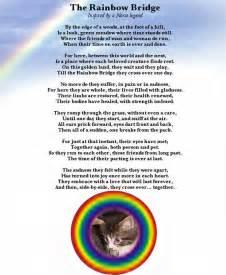 the rainbow bridge poem for cats mr sneakers
