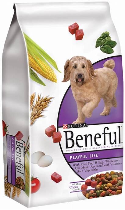 Dog Beneful Bag Steinhauser Lb December Larger