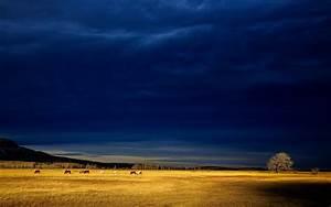 Dark Blue Storm Clouds 4K Full Hd Backgrounds Wallpaper ...