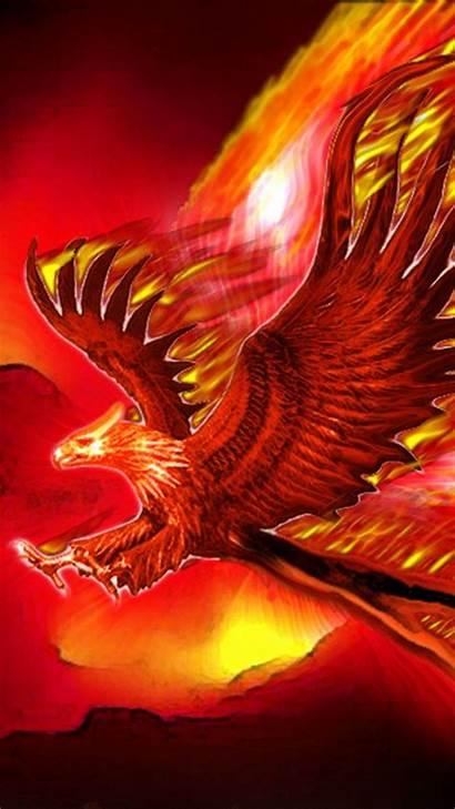 Phoenix Bird Wallpapers Mobile Iphone Backgrounds Resolution