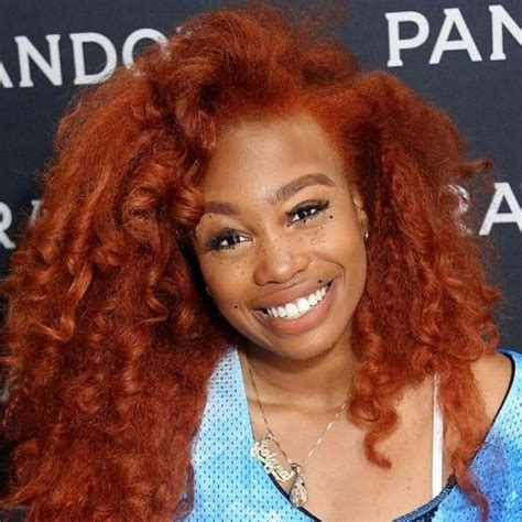 beauty   evolution  sza natural hairstyles