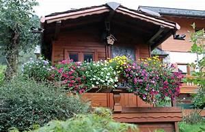 Awesome Terrazzi Fioriti Pictures Home Design
