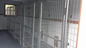 dog kennel boarding in naples florida shelzsmide k9s With air conditioned dog kennel
