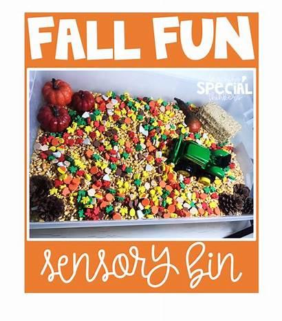 Sensory Fall November Bin Farm Fun Believe