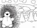 Porcupine Coloring Pages Cliparts Template Printable Getcoloringpages Clip Library Clipart sketch template